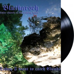 Der Blutharsch - Today I want to catch Clouds LP