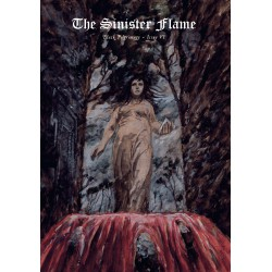 The Sinister Flame VI magazine