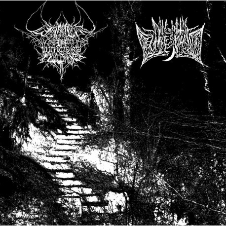 "Lament in Winter's Night / Night's Threshold - Split 7"" EP"